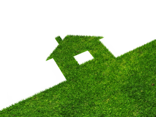 energy efficient home grass